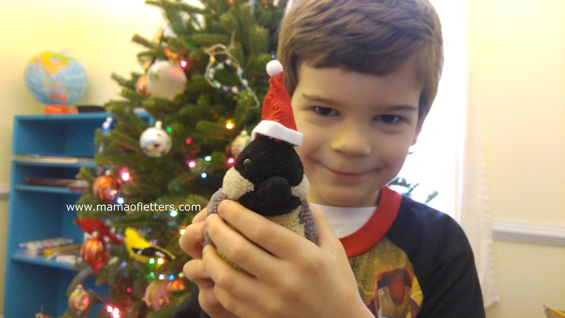 The 10-year-old sewed a Santa's hat for his little brother's favorite toy bird,