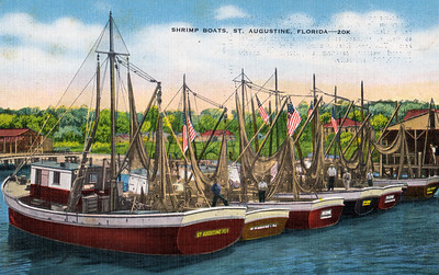 Shrimp Boats, St. Augustine, Florida