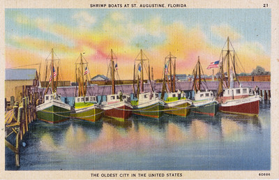Shrimp Boats at St. Augustine, Florida