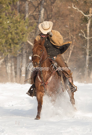Horse Rider in Winter