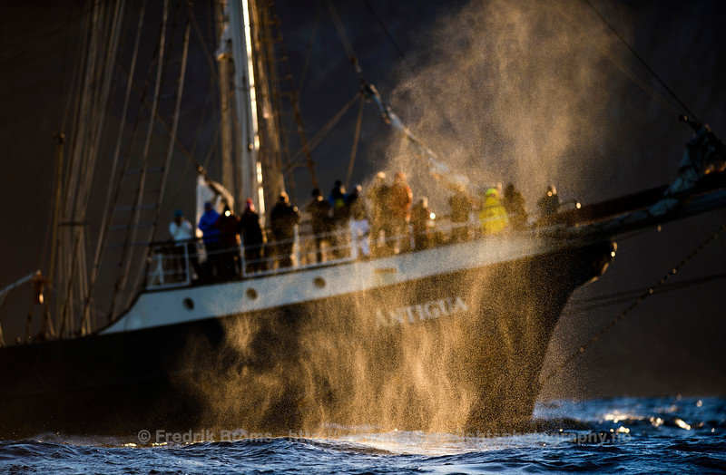 Whale watching, Norway