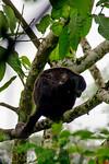 Biodiversity Group, _DSC3654