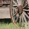 Chipmunk on wagon wheel_SS9879c