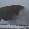 Bison Geyser Facial