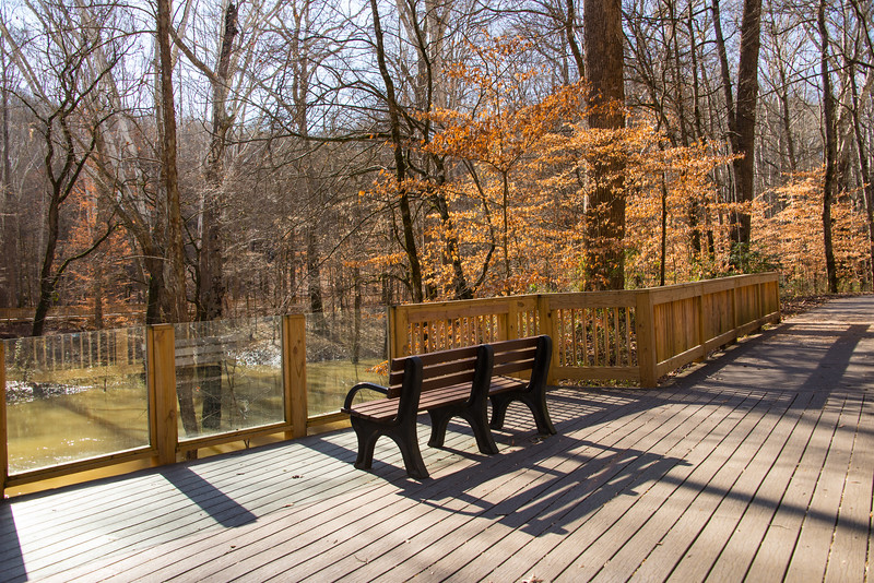 Echo River Spring Trail - Mammoth Cave National Park