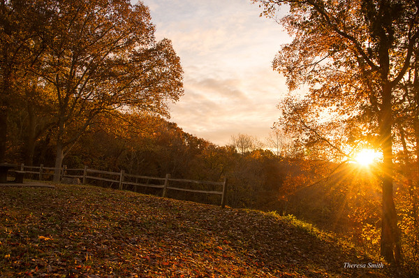 Doyle Valley Overlook - Mammoth Cave National Park
