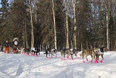 Iditarod Trot