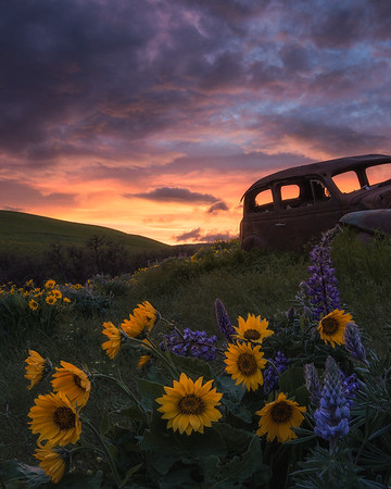 A burning sunset in Dalles Mountain Ranch, Washington