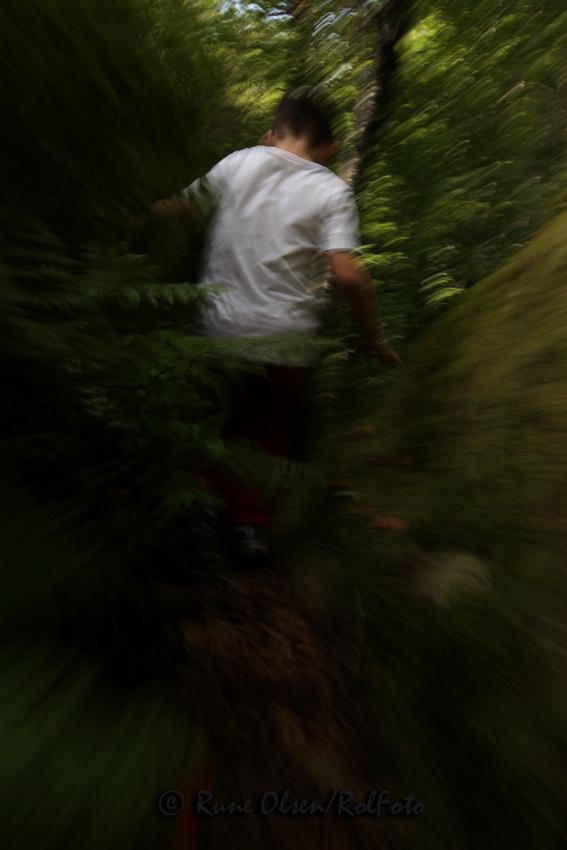 Løpe til skogs....