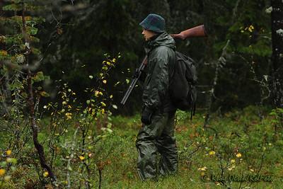 I skogens regnfulle ro