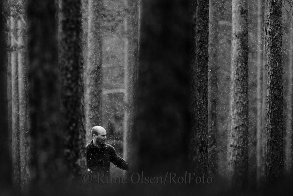 Liten i storskogen
