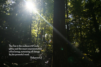 Bible Verse; Hebrews 1:3. Picture was taken on the trail up to Natural Bridge.