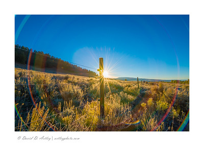 Frosty morning sunrise and fence, along Ohio Creek Road, Gunnison, CO