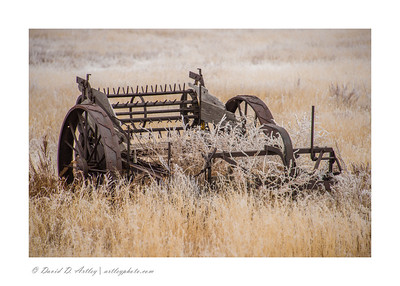 Manure Spreader and frosted grass, El Paso County, CO