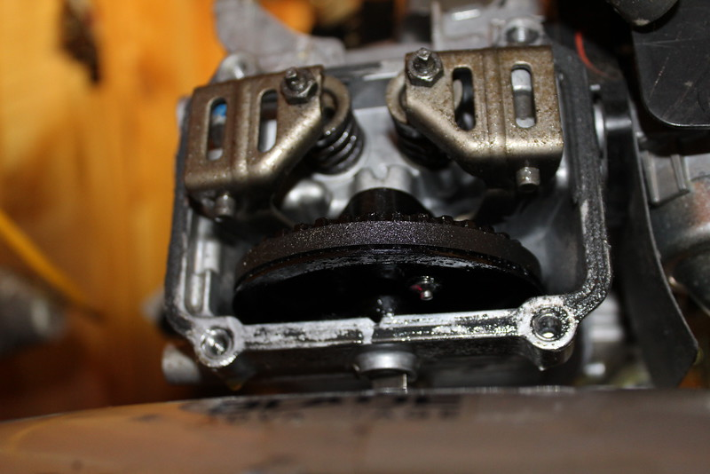 Honda GCV160 timing belt - Bob Is The Oil Guy