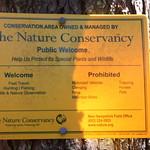Manchester Cedar Swamp Preserve 6
