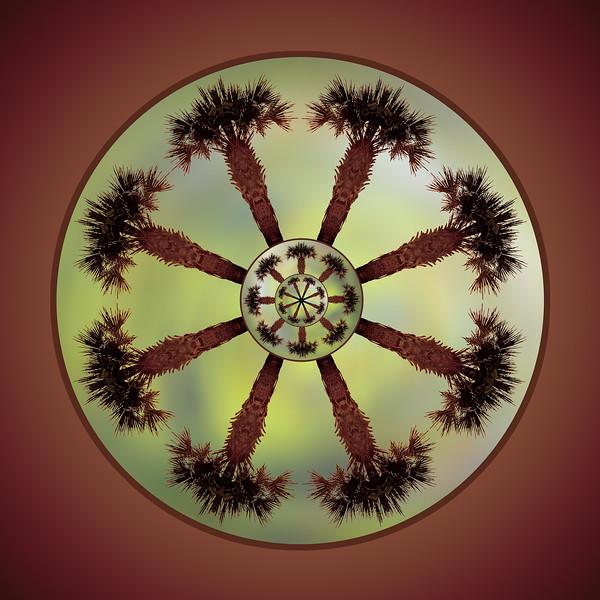 Palmtree Mandala