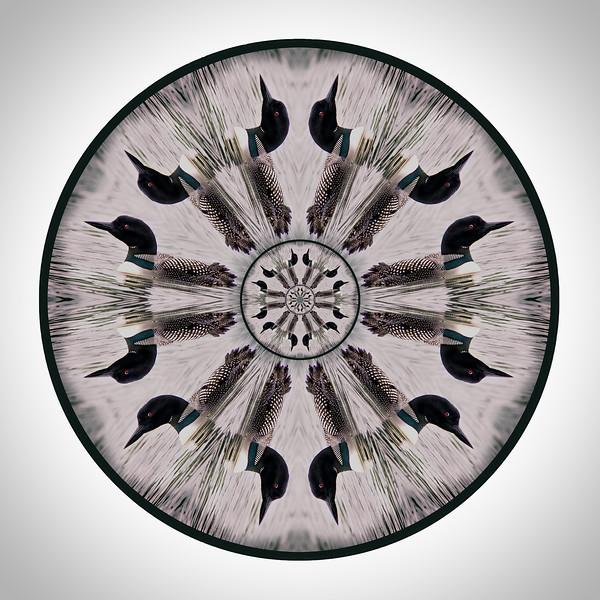 Loon Mandala