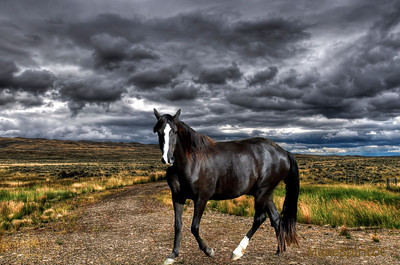 Scenic views of rural Montana farm country under stormy skies