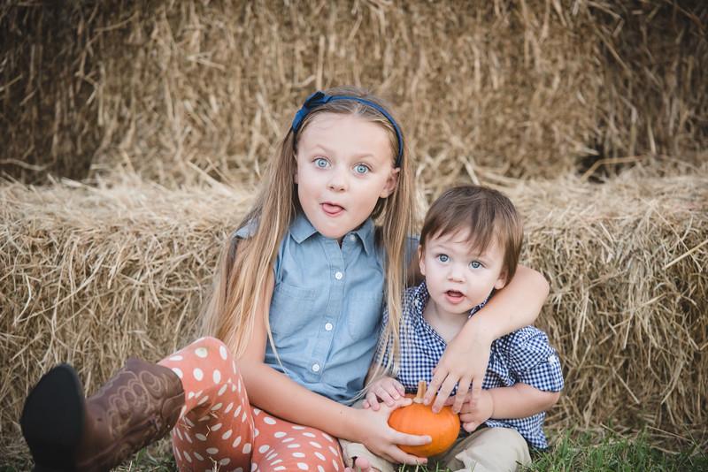 Mangold-Pumpkin-2017-4