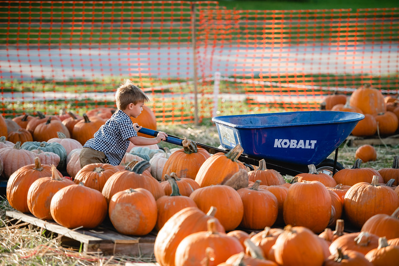 Pumpkins-October2019-61
