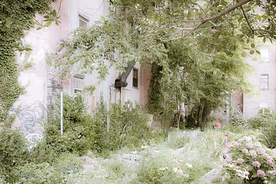 Sixth Street & Avenue B Community Garden