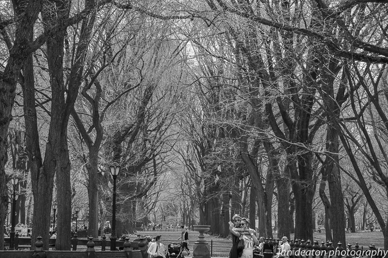 Poets Walk/Central Park