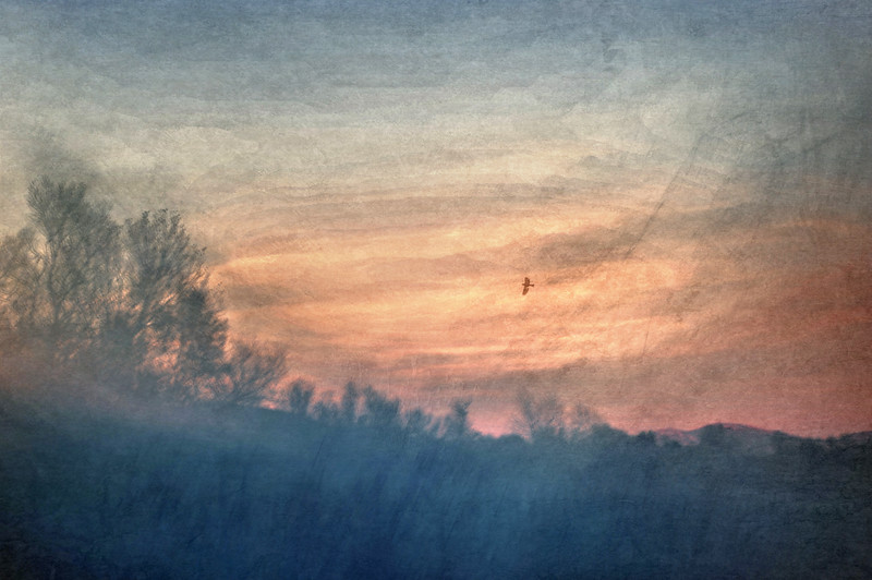 Against The Sky2