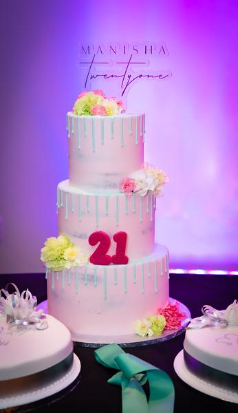 Manisha's 21st_0010