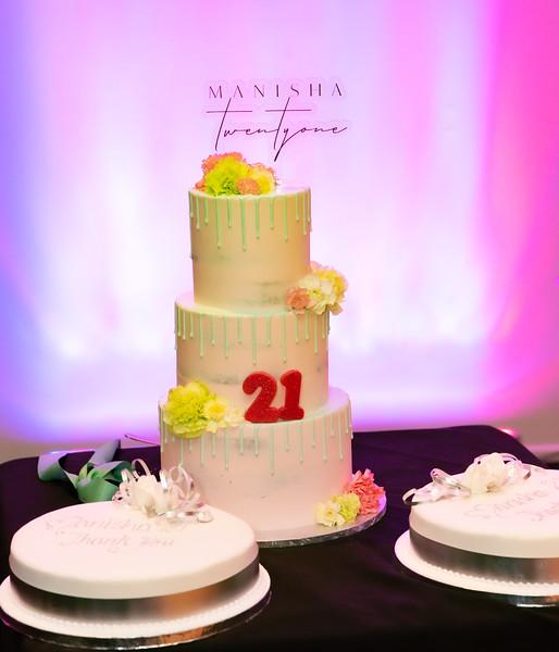 Manisha's 21st_0016