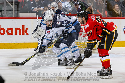 Stockton Heat vs Manitoba Moose