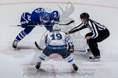 Toronto Marlies vs Manitoba Moose