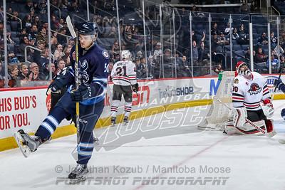 Rockford IceHogs vs Manitoba Moose