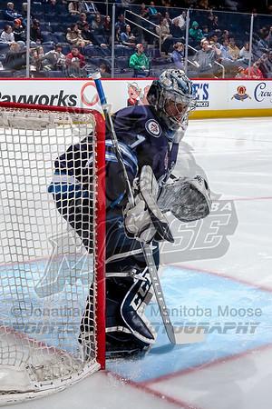 Grand Rapids Griffins vs Manitoba Moose