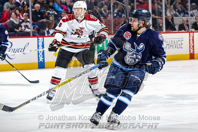 Tucson Roadrunners vs Manitoba Moose