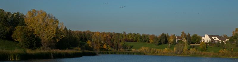 birds hill-2