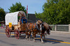 Horses and a covered wagon in the Carman, Manitoba street parade.