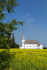 The historic Ste. Thérèse Roman Catholic Church building with a yellow canola field at Cardinal, Manitoba, Canada.