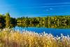A northern Manitoba landscape of fall foliage color and reflections in a small lake near Flin Flon, Manitoba, Canada.