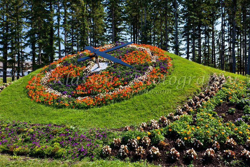The floral clock at the International Peace Garden on the North Dakota and Manitoba border.