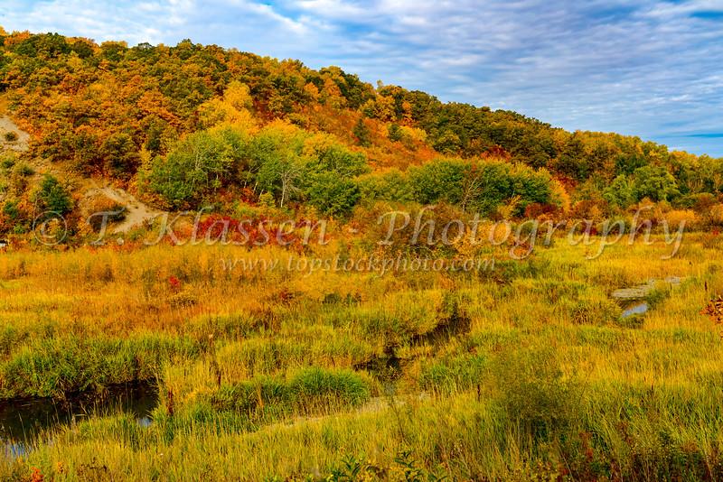 Fall foliage color in the La Riviere Valley, Manitoba, Canada.
