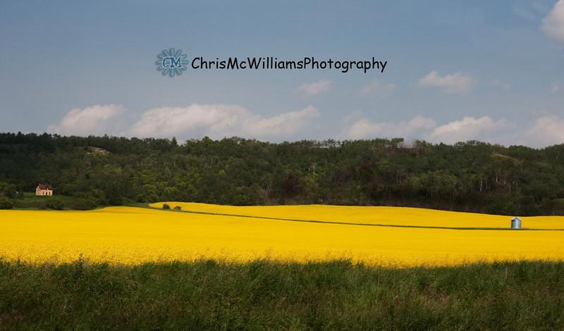 Manitoba scenes,