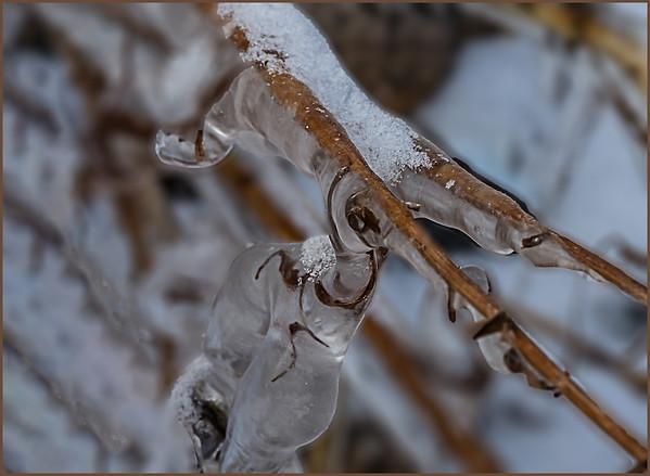 vb 11 19 ice-103