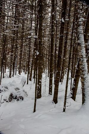 vb snow 1 21-9