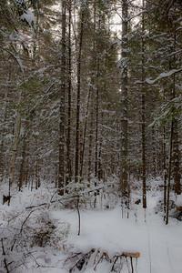 vb snow 1 21-18