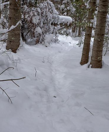 vb snow 1 21-7