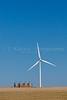 Windmills with grain storage bins on the prairie at the windfarm near St. Leon, Manitoba, Canada.
