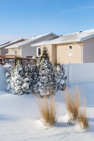 Backyard snow scene after a blizzard in Winkler, Manitoba, Canada.