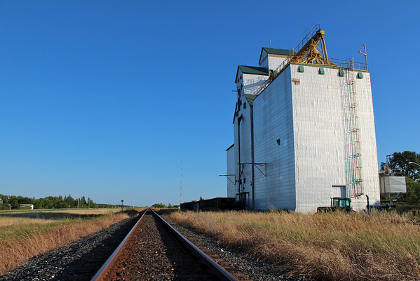 Arden - tracks