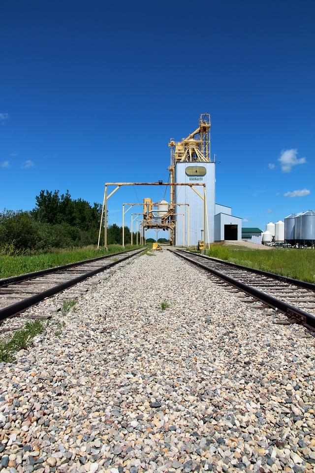 Binscarth - down the tracks (portrait)